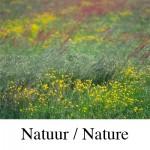 natuur-structuren